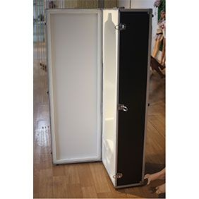Flightcase for your sex doll